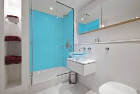 Acrylic Shower Panel as Bathroom Feature
