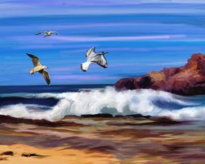 Coastlines, Art, birds, sea.